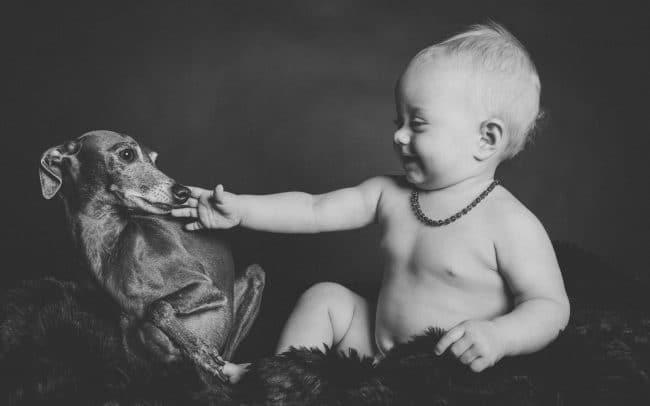 Babyfoto mit Hund im Studio von Miriam Merkel Fotografie in Göttingen schwarz weiss